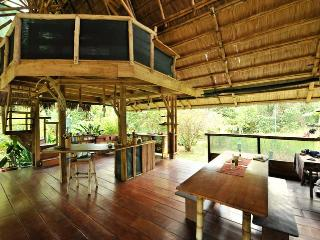Bamboo Jungle Beach House, Puerto Jimenez