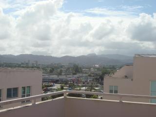 Beautiful Penthouse 3BD & 2BA in Caguas, PR