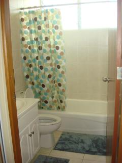 Full 2nd Bathroom