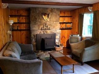 Living Area w/Woodstove