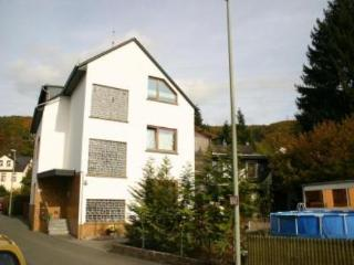 Vacation Home in Fachbach - 753 sqft, quiet, modern, new (# 4934)