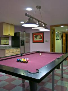 the basement billiard room
