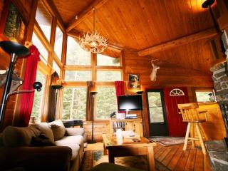 The Ultimate Cabin Experience!