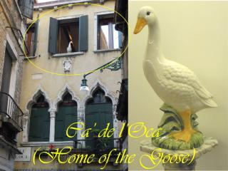 Ca de l Oca,  luxury centre 3/4 bedrooms 3 baths, Venedig