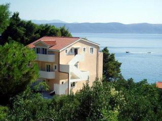 Villa Maslina-Olive STUDIO Adrion