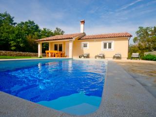 Romantic and peaceful Villa with pool- Villa Darko, Svetvincenat