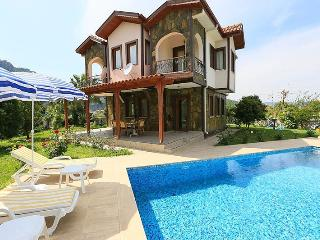 Luxury villa,large private pool,beautiful garden,f, Dalyan