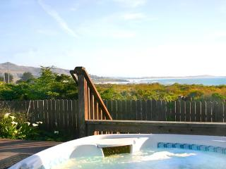 Papy's Cottage by the Sea - Ocean & Pasture Views, Bodega Bay