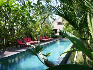 LUXURY Villa Budi Million$ Ricefield Views in Ubud