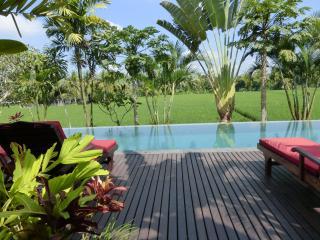 Bali Harmony Villa-Million$ Views in Ubud ONLY $79