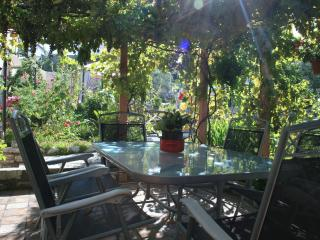 Breakfat and dinner under the vine covered Pergola