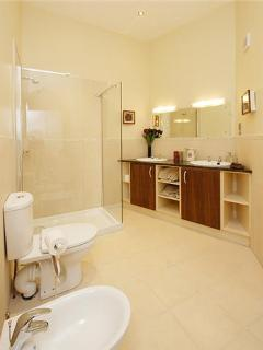 Bathroom with twin basins and large power shower