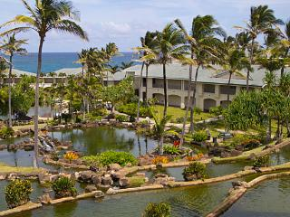 The Point at Poipu-Luxury in Kauai-AVAILABLE CHRISTMAS 2017-DECEMBER 23-10 NIGH, Koloa