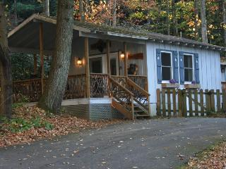 Babbling Brook Cottage - Hot Tub - WiFi - Fenced - Gas Fireplace