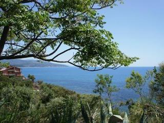 A nice Villa with charme with private beach..., Marina di Casal Velino