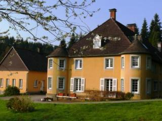 LLAG Luxury Vacation Apartment in Neuenrade - 1722 sqft, exclusive, beautiful, antique (# 4979)