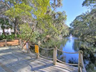 Upscale Interior. Private Back Deck. Free Bikes Pool Tennis Pet Friendly, Hilton Head