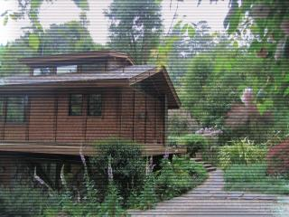 Unique Creekside Home, Point Reyes Station