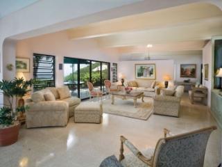 Elegant 2 Bedroom Hillside Mansion on St. Thomas