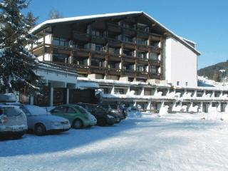 Ski,golf, adventure pretty flat Maria Alm ,Austria, Hinterthal