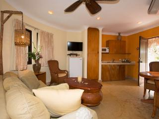 living area with sofa bed, flatscreen TV, DVD player, AC, ceiling fan and well equipped kitchenette