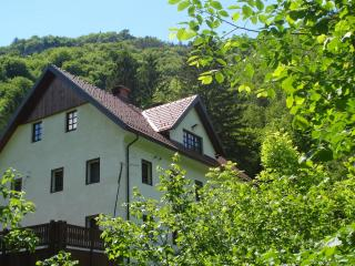 Reka Farmhouse/River house period property ****, Cerkno