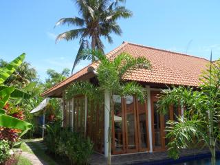 Villa Yvon Bali., Kaliasem