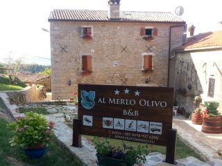 """Al Merlo Olivo"" 3*** rural house"
