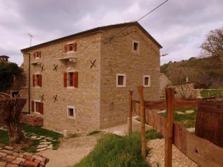 """Al Merlo Olivo"" 3*** rural house"