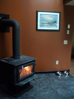 Wood stove in corner of living room, firewood included!