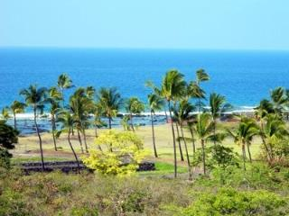 Best Na Hale View, Location and Amenities with Great Pricing!, Kailua-Kona