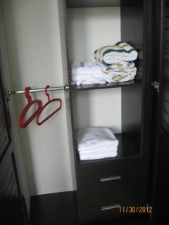 Built in closets with towels and linens