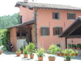 Eco-Friendly Farmhouse with horses P1, Castiglione di Garfagnana