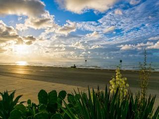 Seawall & Beach