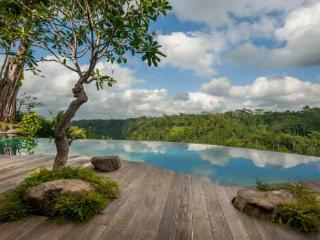 Villa Hartland Estate Ubud Bali 5 bedroom River Retreat
