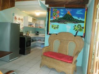 Secluded country cabin with jungle view & WIFI, Atenas
