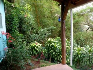Secluded country cabin with jungle view & WIFI