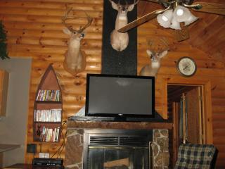 Rustic Log Cabin,2 jacuzzis,Private Lake,1m to SDC, Branson