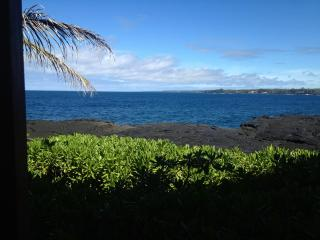 Waterfront!, Pahoa