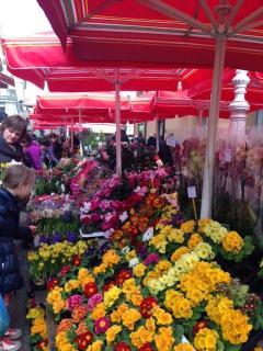 Central market Dolac