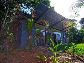 Private 8acre Modern Home w/Pool- The Jungle Villa, Dominical