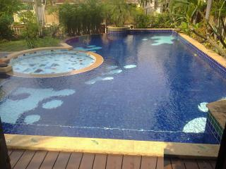 Large Swimming Pool With Jacuzzi and Kids Pool