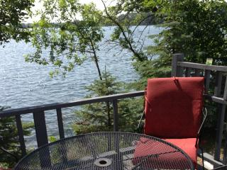 Family Home on 2 Lakes! 335' of Lakeshore. Pontoon, Hoffman