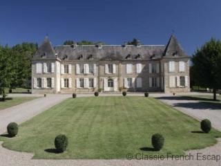 47483 - Magnificent Chateau wi, Castelnaud-la-Chapelle