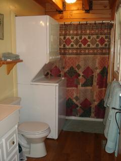 Washer/dryer in the bathroom. Shower into tub