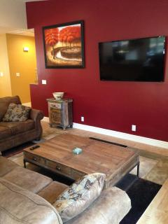 Living room with 60 inch flat screen wifi TV