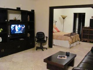 Luxury Condo in Downtown Cabo San Lucas, Colonia Luces en el Mar
