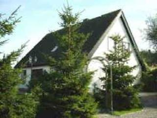 Vacation Home in Riepsdorf - 818 sqft, quiet, friendly, natural (# 5036), Thomsdorf