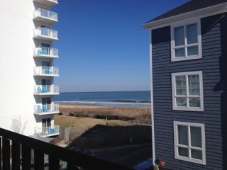 East Facing OCEAN VIEW Remodeled 1BR1BA - Luxury