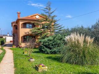 45536-Holiday house Sisan, Liznjan